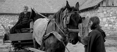 El-caballo-de-Turín